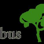 Firmenlogo von Arbus Baumkontrolle