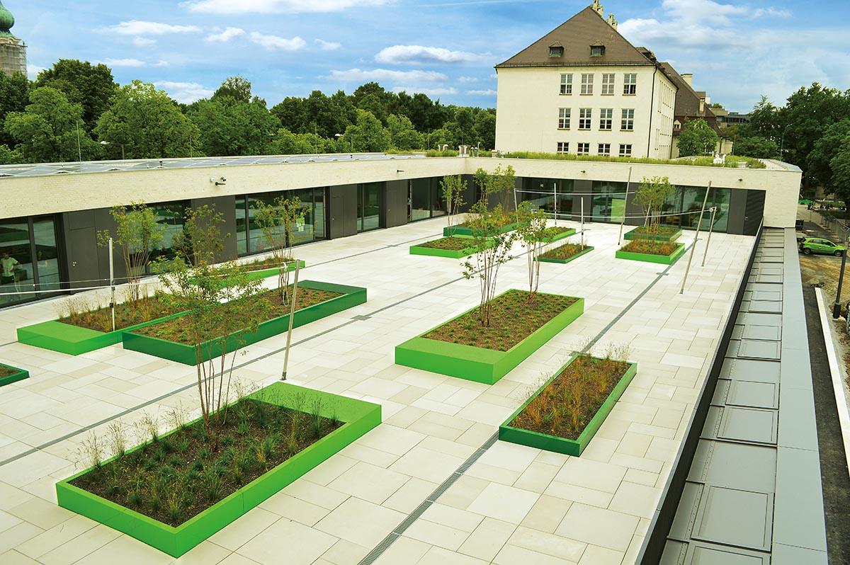 Eine Schule in München zeigt Extensivbegrünung auf den oberen Dachflächen (hinten) und Pflanzbeete auf der begehbaren Dachterrasse.
