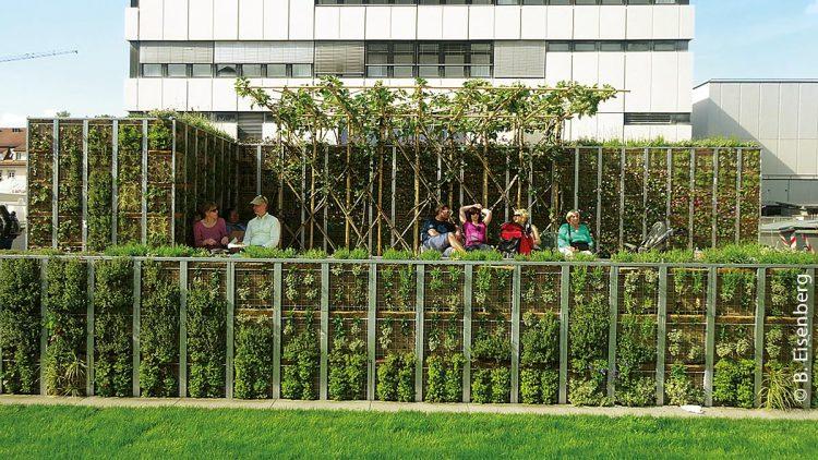 Das Grüne Zimmer kurz nach der Fertigstellung im Mai 2014: Selbst bei sehr hohen Außentemperaturen bildet sich innerhalb der grünen Wände ein einigermaßen erträgliches Klima.