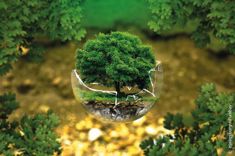 KUMAS Environmental Protection