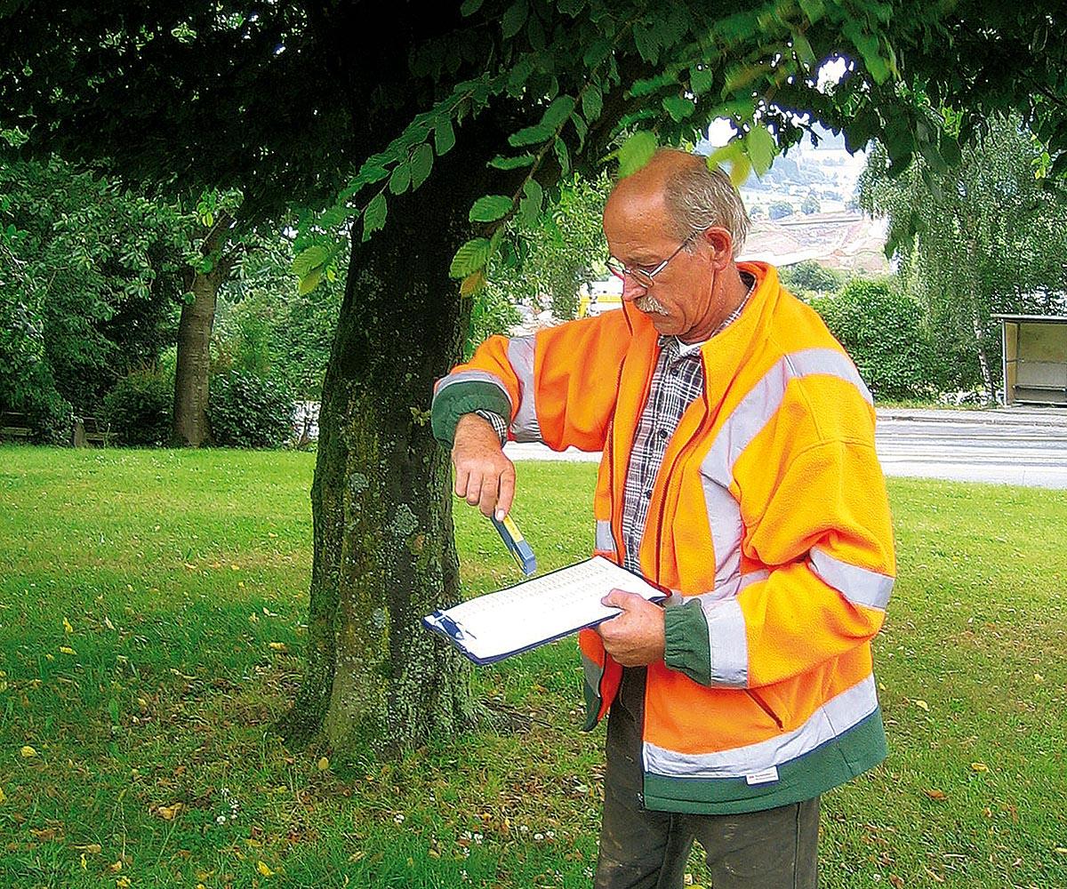 Im Einsatz bei einer Baumkontrolle