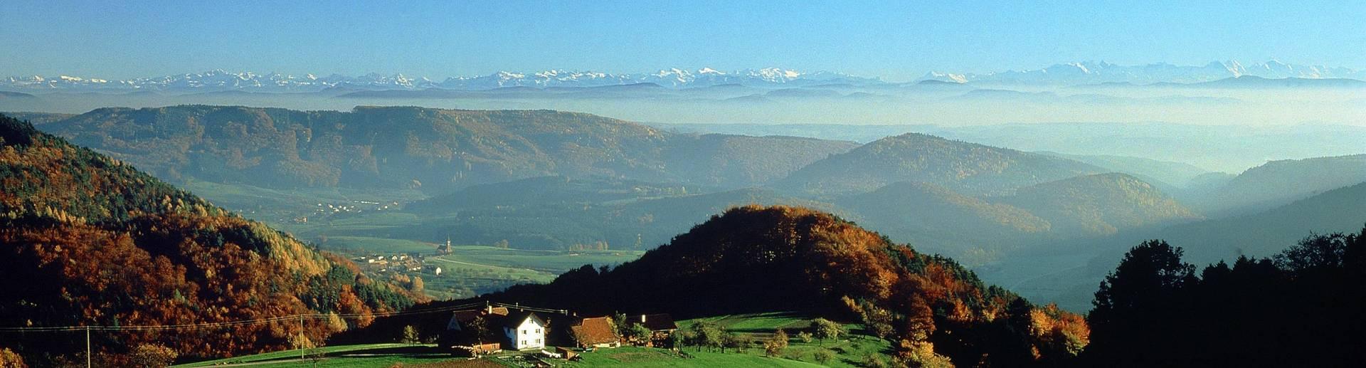 Die kleine Gemeinde Steinen liegt idyllisch in Südbaden, im Landkreis Lörrach.