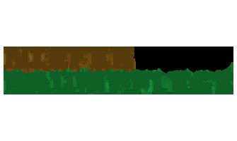 Logo Niefer Baumpflege