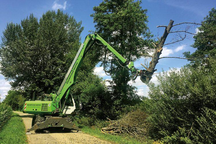 Baumpflege: Hohe Bäume sind auch für den Fällbagger Sennebogen 718 mit bis zu 15 Metern Reichweite kein Problem.