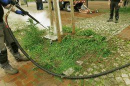 Wildkrautbekämpfung: Heißdampf-Komplettset aus dem Hause Bertsche