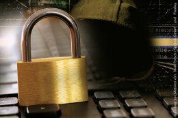 Im Fadenkreuz der Cyberkriminelle: Im Fadenkreuz