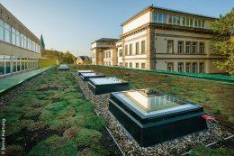 Im Vordergrund sieht man die vier Glaselemente auf dem Dach, die der darunter liegenden Pausenhalle natürliches Tageslicht ermöglichen.