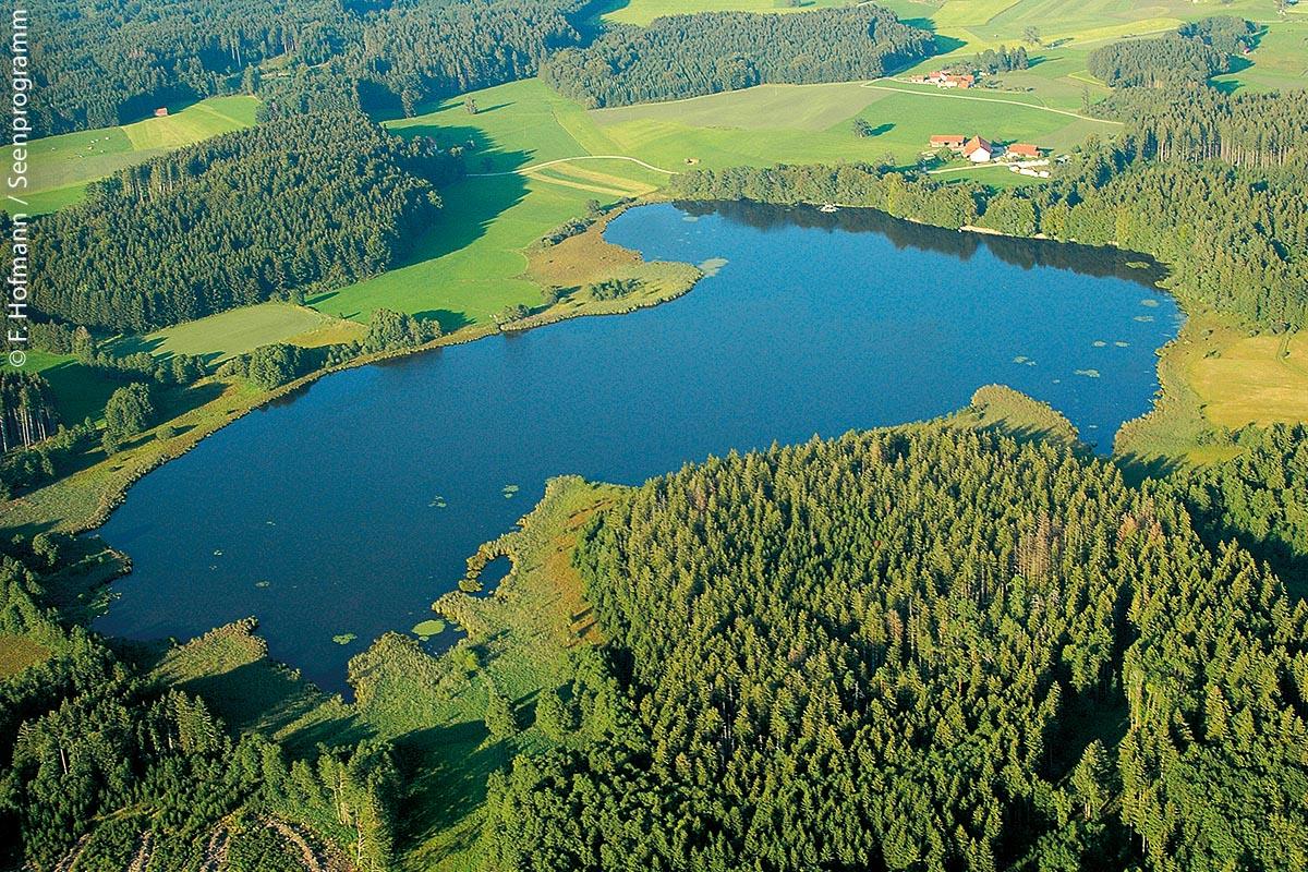 Der Holzmühleweiher liegt in der oberschwäbischen Moor- und Hügellandschaft bei Wolfegg.