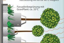 Durch eine Mehrschichtbegrünung mit dem GraviPlant wird ein kühlender Effekt erzielt. Im Vergleich zu nicht begrünten Fassaden, die sich bei Sonneneinstrahlung stark aufheizen können, bleibt die Temperatur der begrünten Fassade in einem moderaten Bereich.