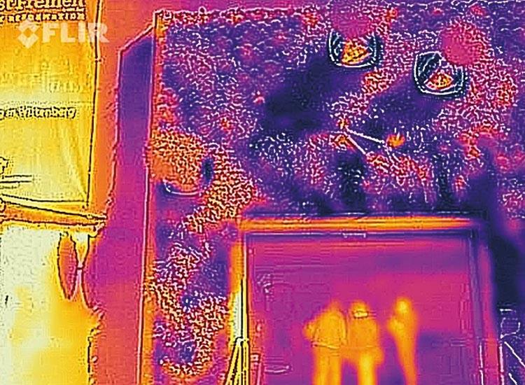 Bei der wandnahen Begrünung zeigt sich bereits eine Reduktion der Oberflächentemperatur. In Kombination mit den Graviplants entstehen beschattete Bereiche mit nur 22°C Oberflächentemperatur (bläulich schwarz). Am linken Rand des Bildes ist zum Vergleich eine Betonfassade, die deutlich wärmer ist, als die begrünten Bereiche (Gelb- und Orangetöne).