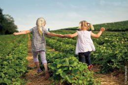 Zentrale Rolle der Wissensvermittlung – Ökolandbau und Biodiversität sollten gerade Kindern anschaulich nähergebracht werden.