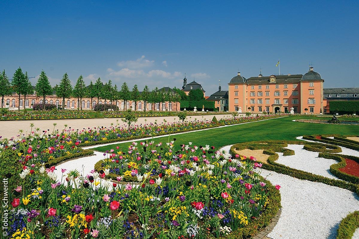 Das Schloss (mit Schlossgarten im Vordergrund) ist die ehemalige Sommerresidenz der Kurfürsten von der Pfalz und Wahrzeichen der Stadt.