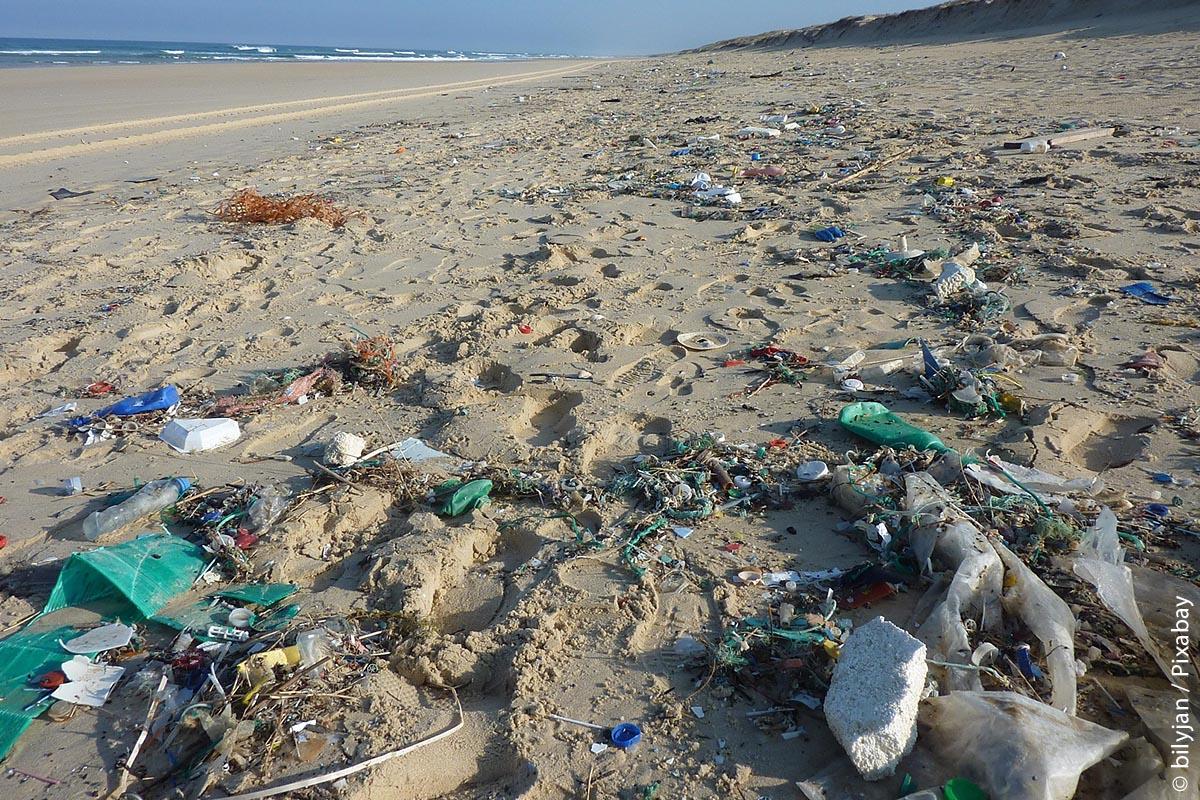 Selbst die Meere sind voll von Plastikmüll und ein kleiner Teil davon wird immer wieder an die schönsten Strände gespült.