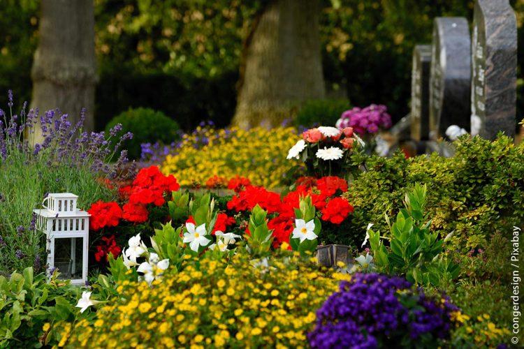 FRIEDA ist ein webbasiertes und einfach zu bedienendes Friedhofsprogramm, das als Mietsoftware zu geringen Kosten über das Internet genutzt werden kann.