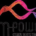 EM Power Messelogo