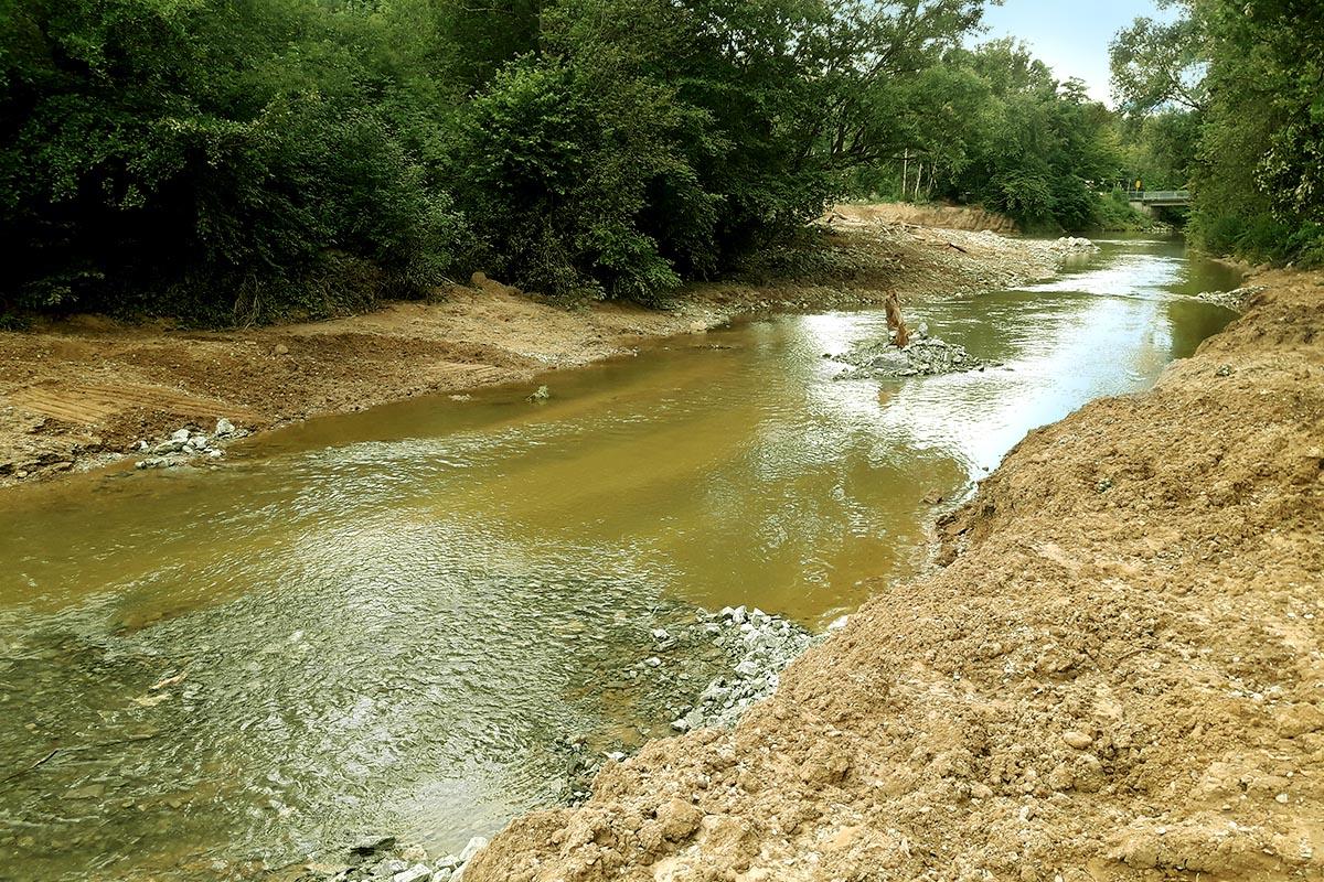 Durch unterschiedliche Breiten und Nischen entlang des Flußbettes, werden unterschiedliche Fließgeschwindigkeiten und Wasserstände erzeugt, die eine große Vielfalt an Pflanzen- und vor allem Tierarten zum Ansiedeln bewegen.