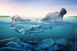 Bis zu 450 Jahre bleibt eine PET-Flasche im Meer und zerfällt dabei durch Wellenschlag und UV-Strahlung in Mikroplastik. Welche Folgen das Mikroplastik für Tiere, Pflanzen und den Menschen hat, lässt sich im Moment nur erahnen.