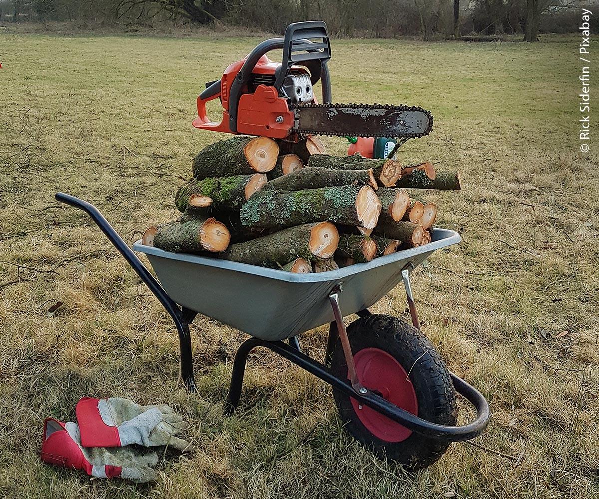 Für kommunale Arbeiten im Bauhof oder der Park- und Gartenpflege ist das Modul A die Mindestanforderung und berechtigt zum Arbeiten mit der Motorsäge am liegenden Holz und der Fällung von Schwachholz bis 20 Zentimeter  Brusthöhendurchmesser des Stammes.