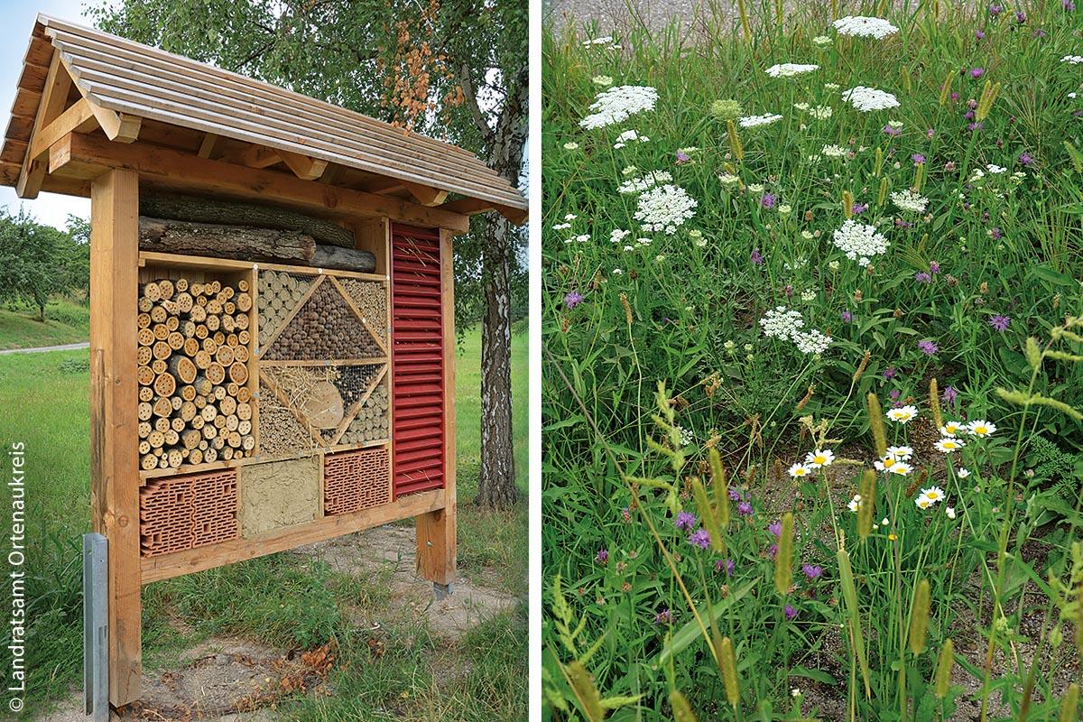 Ein Insektenhotel, wie dieses im Ortenaukreis auf einem Rastplatz, bietet zudem den richtigen Unterschlupf für kleine Lebewesen. Die Nahrungsquelle, eine heimische Blumenwiese mit Wiesen-Margerite, Flockenblume, Schafgarbe, Wilder Möhre und anderen Kräutern, befindet sich gleich daneben.