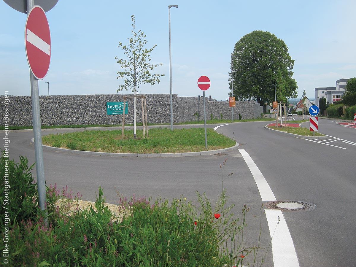 """Die 2019 neu angelegten Verkehrsinseln am """"Haslacher Weg"""", mit dem sich Bietigheim-Bissingen beworben hat, beginnen zu ergrünen."""