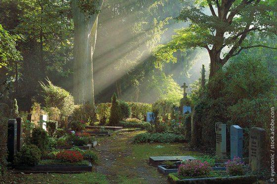 Morgensonne im Herbst auf dem Heidelberger Bergfriedhof