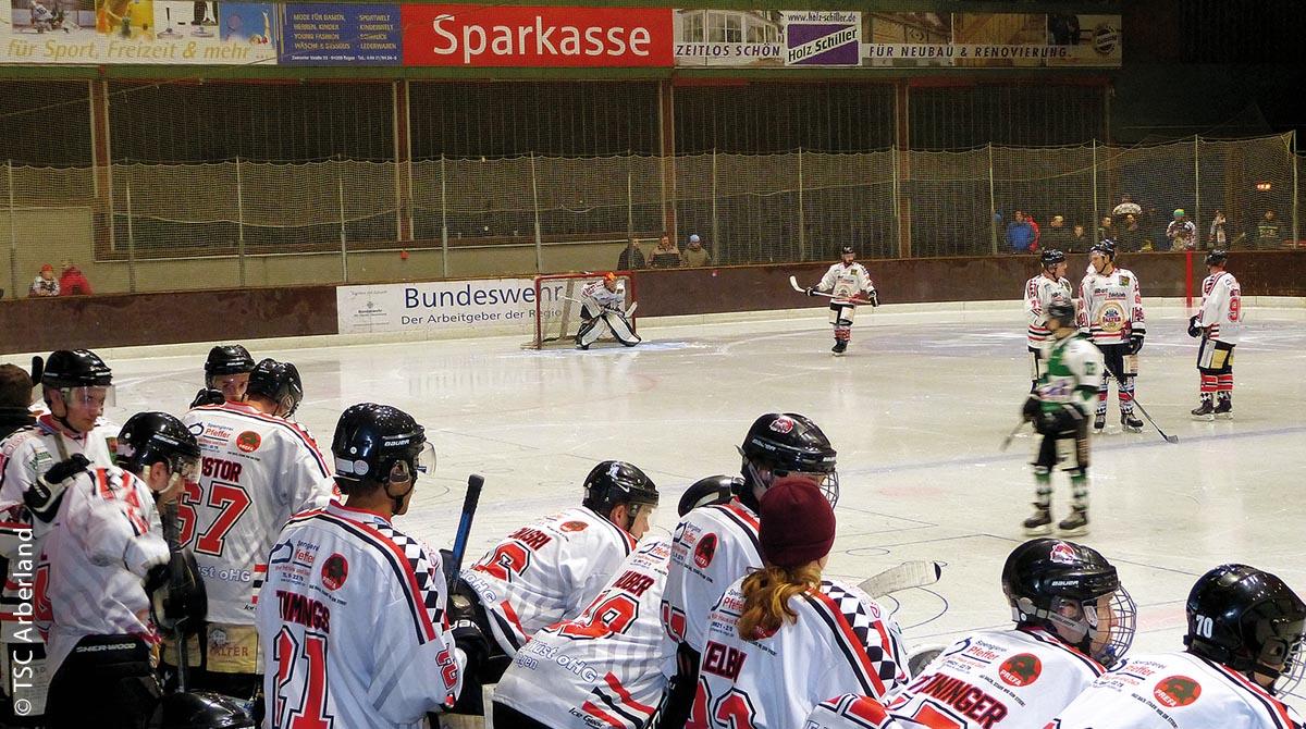"""Die Eishockey-Mannschaft """"ERC Red Dragons"""" bei einem Spiel in der Eishalle in Regen"""
