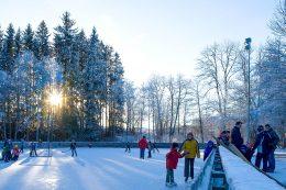 Die Natureisbahn Hermeshof liegt mitten im Wald bei Titisee-Neustadt.