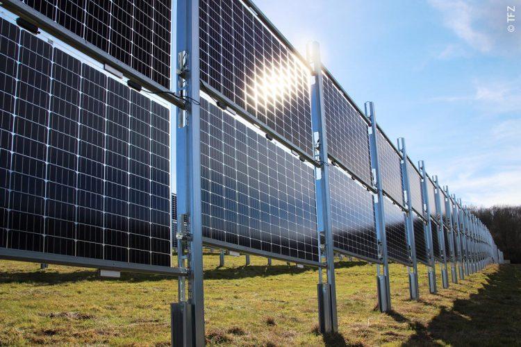 Vertikal aufgeständerte bifaziale PV-Module der Agro-PV-Anlage des Unternehmens Next2Sun in Eppelborn-Dirmingen (Saarland) lassen viel Platz für die landwirtschaftliche Bewirtschaftung.