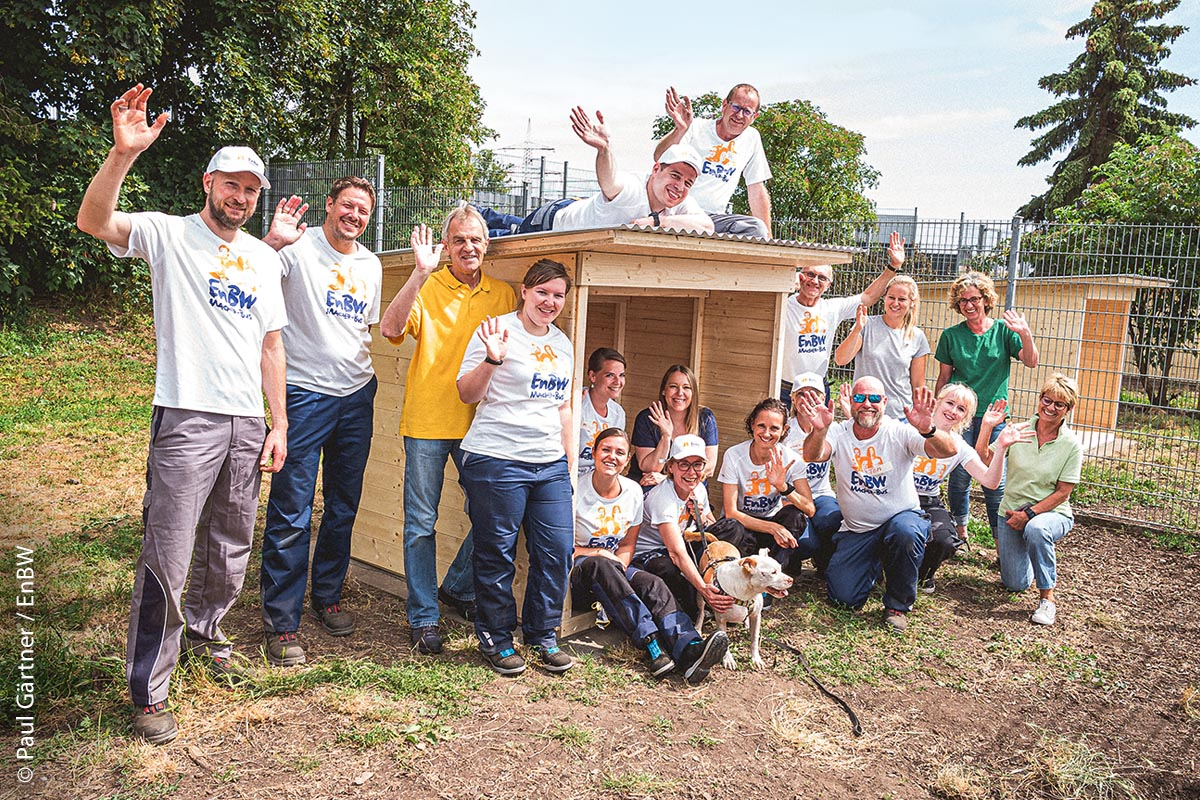 Insgesamt vier schöne Hütten mit Wellblechdach haben die freiwilligen Helfer der EnBW zusammengezimmert. Kurz nachdem die letzte Schraube eingedreht war, wurden sie auch gleich von den Bewohnern getestet. Das Urteil: den Hunden gefällt´s!