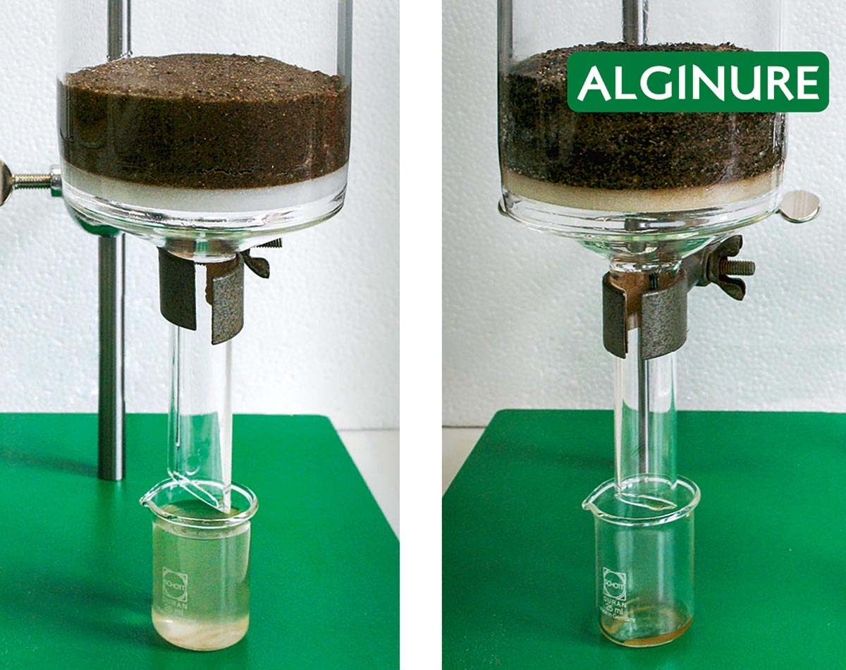 Das Alginure Bodengranulat 1 hat Einfluss auf die Wasserspeicherfähigkeit des Bodens. Bei Einsatz des Bodengranulats (rechts) bleibt das Wasser im Boden, ohne fließt es ab (links).