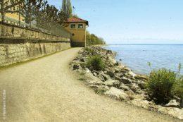 Der MTU-Uferweg in Friedrichshafen wurde mit der Deckschicht HG-MIX pluS Stabilizer ausgelegt.Der MTU-Uferweg in Friedrichshafen wurde mit der Deckschicht HG-MIX pluS Stabilizer ausgelegt.