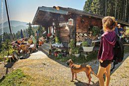 Wanderer und Mountainbiker, die den Weg durch den Wald hinauf zur Hündeleskopfhütte meistern, werden belohnt. Aktuell, in Coronazeiten, wird dabei auch auf genügend Abstand geachtet.