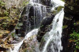 Der Rotenbach, ein kleiner Nebenbach der Wiese, zeigt am Feldberg eine besondere Sehenswürdigkeit: die Fahler Wasserfälle.