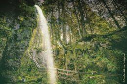 Der Menzenschwander Wasserfall gehört zu den beeindruckendsten im Schwarzwald.