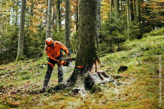 Ganz gleich ob im Wald oder in der Werkstatt: Arbeitsschutz ist ein wichtiges Thema.
