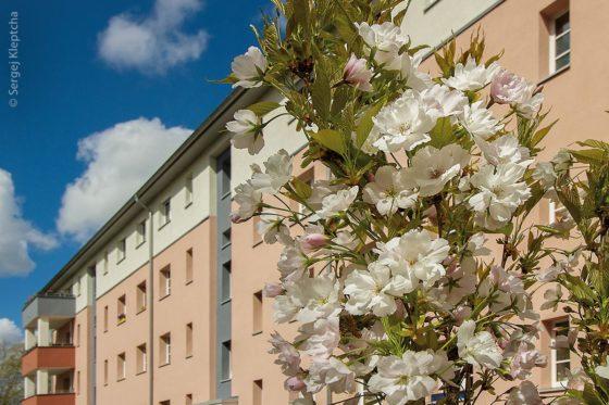 Die nachhaltigste Methode, in Großstädten neuen Wohnraum zu schaffen, ist, vorhandene Wohnhäuser mit neuen Etagen aufzustocken. Das ist auch in dieser Wohnanlage im Berliner Stadtteil Lichterfelde geschehen.