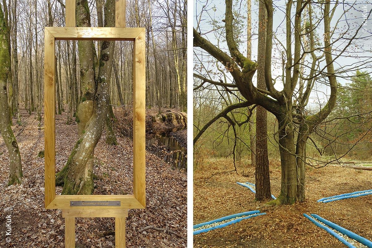 """Links: Station """"Akademie des Waldes"""": Bäume, die Kunstwerke imitieren wie hier """"Der Kuß"""" von Constantin Brancusi. Rechts: Radiästhetiker entdeckten eine Wasseraderkreuzung unter dem Baum, in den offenbar mal ein Blitz einschlug. Künstler inspirierte dies, die Wasseraderkreuzung auf dem Boden darzustellen."""