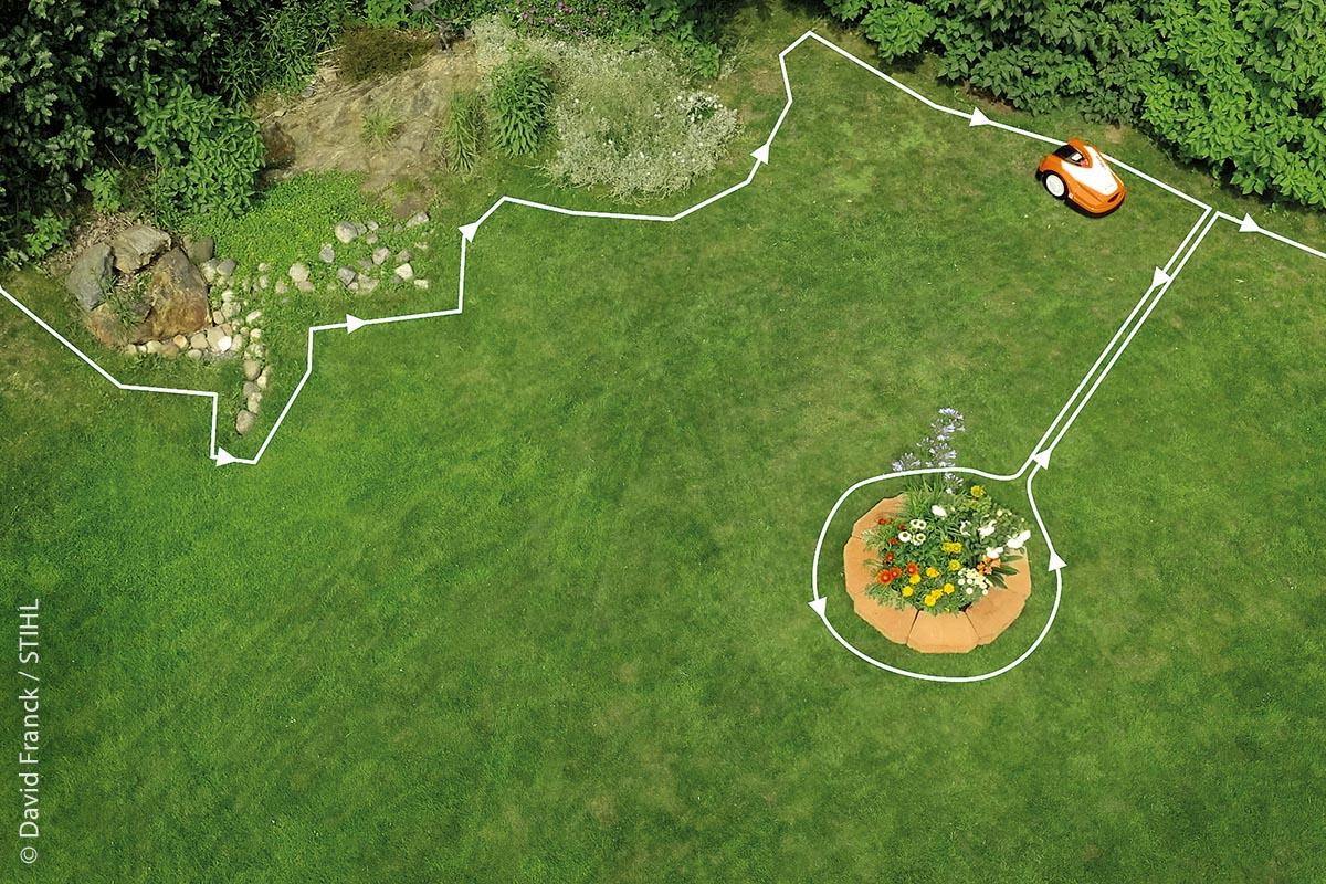 Die richtige Schnitthöhe hilft den Pflanzen, sich anzusiedeln und Insekten oder Spinnen Lebensraum und Nahrung zu bieten.
